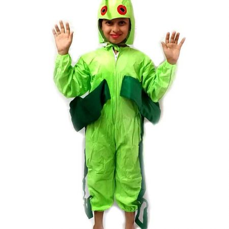 Grasshopper Costume on Rent