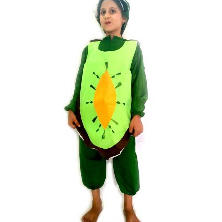Kiwi Costume on Rent
