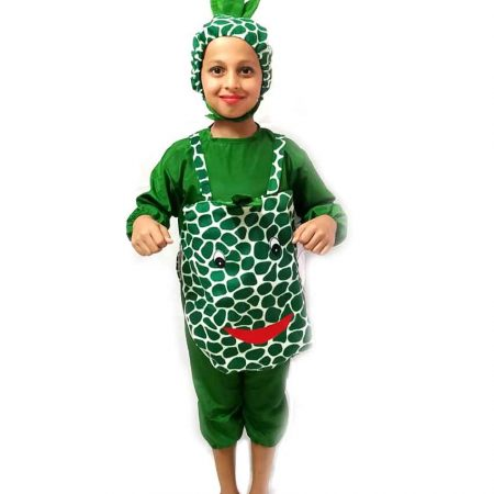 Pineapple Costume on Rent