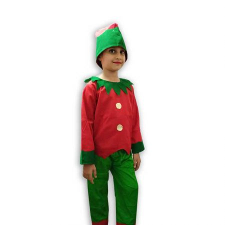 Hire ELF Costume