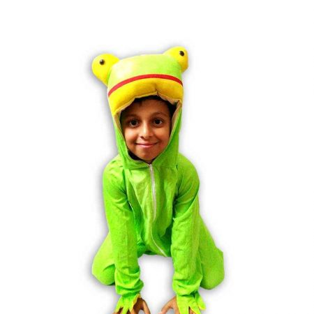 Hire Frog Costume